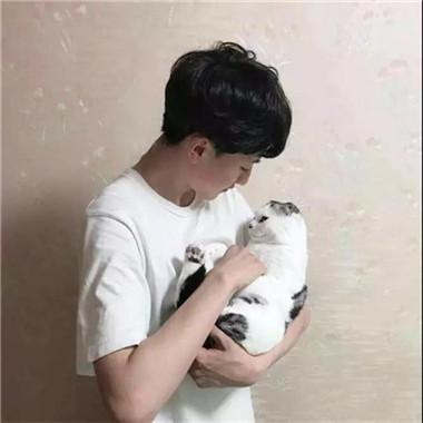 情侣头像一男一女带猫高清好看的情侣头像抱着猫咪帅气图片