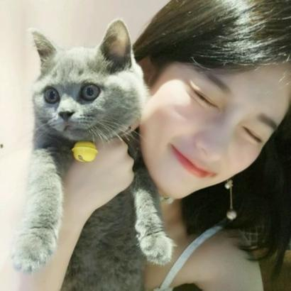 带猫的女生头像图片高清好看带猫咪的女生头像图片