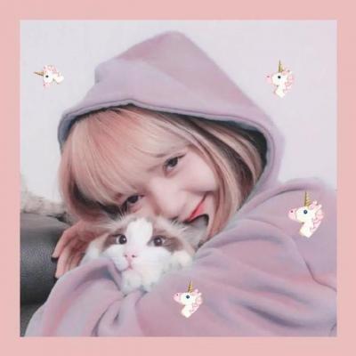微信头像抱猫女生头像高清唯美清新抱猫咪的女头图片
