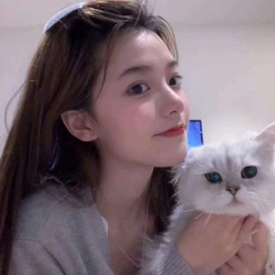 抱着猫咪的女头像,高清漂亮女头抱着猫咪的图片