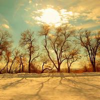 唯美风景头像小清新小清新好看的唯美风景头像精选