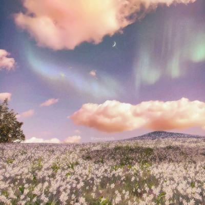 天空微信高清头像高清粉色天空很美的风景图片头像